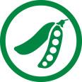 Cultivar Anta 82